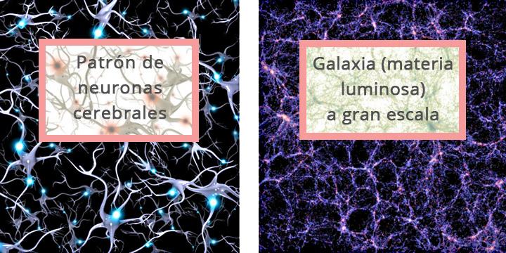 neuronas-universo